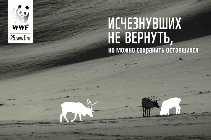 Digital-носители продемонстрируют угрозу вымирания редких видов животных