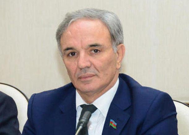 Чтобы сделать азербайджанские медиа сильнее, депутат предложил искать пути расширения рекламного рынка