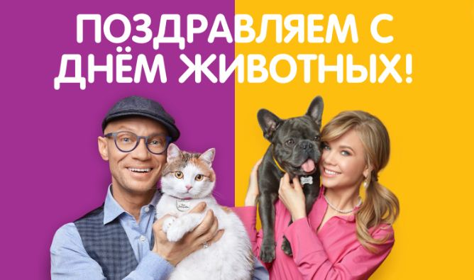 В честь Дня животных Mars Petcare и BBDO Moscow предложили называть питомцев по имени и отчеству
