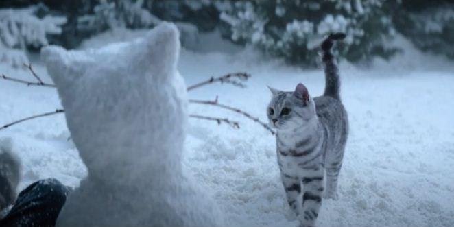 Whiskas и BBDO Moscow запустили кампанию «Новогодние волшебники»