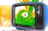 Реклама на региональных телеканалах: курочка по зёрнышку...